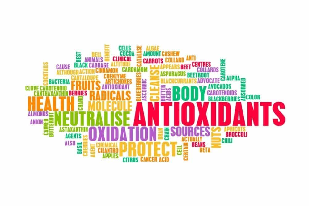 what are antioxidants Image